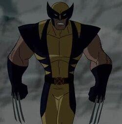Wolverine WXM.jpg