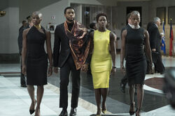 Black Panther5a8bb499d8c2f.jpg