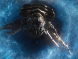 Leviathans/Gallery