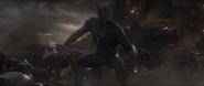 Black Panther (2023)