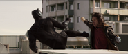 Winter Soldier vs. Black Panther