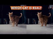 Which Goose the Cat is Real? - Making Marvel Studios' Captain Marvel