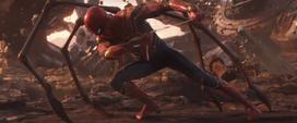 Parker jalando de su red