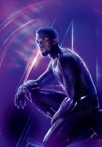 AIW - Póster sin texto de Pantera Negra