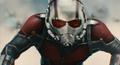 Ant-Man liderando hormigas