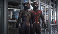 Ant-Man and the Wasp - Captura promocional