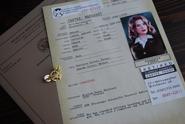 Archivos de Carter en S.H.I.E.L.D.