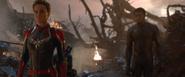 Black Panther & Captain Marvel