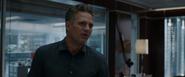 Bruce Banner (Avengers Endgame)