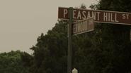 Pleasant Hill St