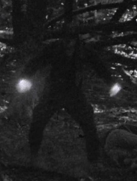 Iron Fist (1948)