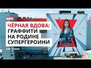 Чёрная Вдова - Огромное граффити в Волгограде