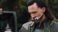 Loki con un bozal