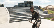 Black Panther5a8bb48c958b4