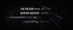 The Falcon and the Winter Soldier.png