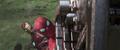 Parker salva a Stark