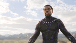 BlackPanther MethodStudios ITW 07.jpg