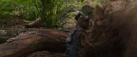 Rocket ve desaparecer a Groot