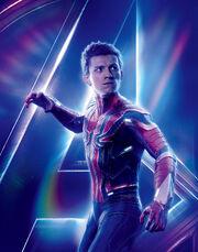 Spider-Man AIW Profile.jpg