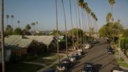 L.A Palm Trees (2x03)