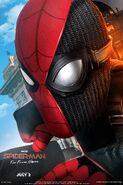 FFH Dual Suit Poster