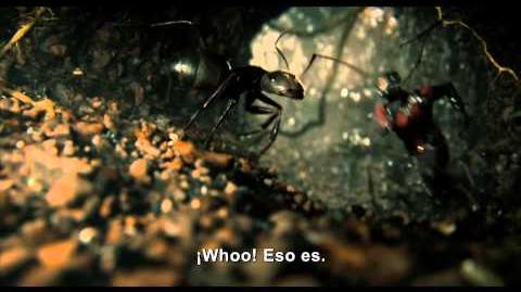 Ant-Man El Hombre Hormiga - Luis