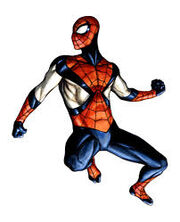 Spider-Man Earth-606 second costume.jpg