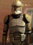 Clone-commander-reports