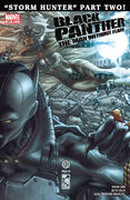 Black Panther The Man Without Fear Vol 1 520