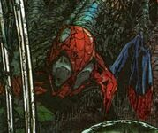 Peter Parker (Earth-5560)
