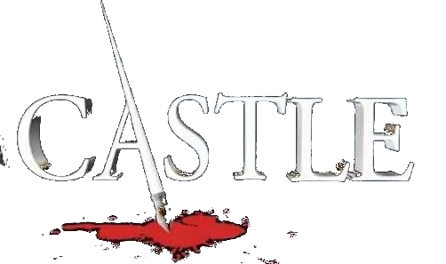 Castle: Richard Castle's Storm Season Vol 1