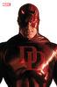 Daredevil Vol 6 23 Daredevil Timeless Variant.jpg