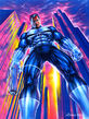 Frank Castle (Earth-616) from Marvel Masterpiece (Trading Cards) 1994 Canvas Edition 001
