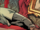 Dorian Gray (Ideaverse) from Deadpool Killustrated Vol 1 4 001.png