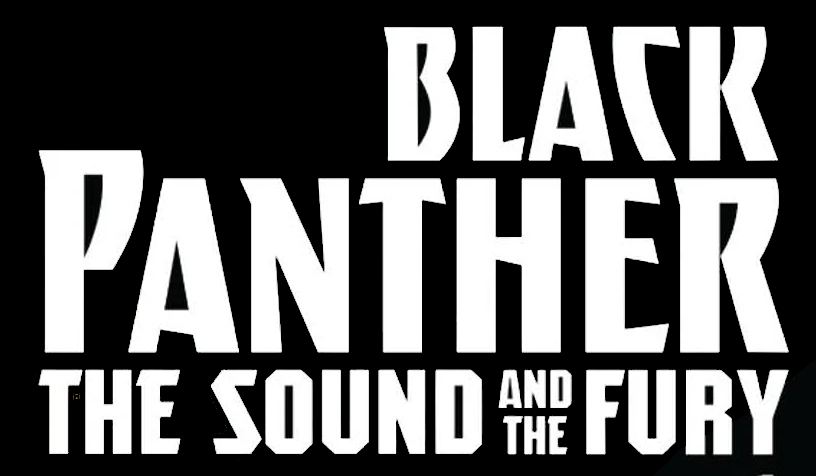 Black Panther: The Sound and the Fury Vol 1