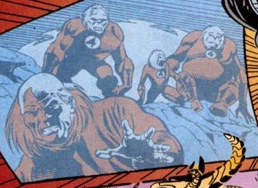 Fantastic Four (Earth-95121)