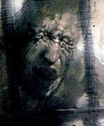 Scott Summers (Earth-9591)