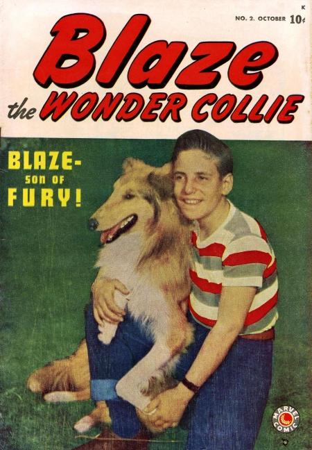 Blaze the Wonder Collie Vol 1