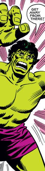 Bruce Banner (Earth-4080)