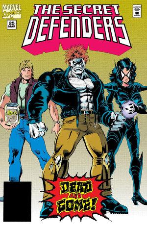 Secret Defenders Vol 1 25.jpg
