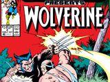 Marvel Comics Presents Vol 1 4