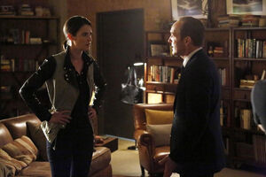 Maria Hill (Earth-199999) and Phillip Coulson (Earth-199999) from Marvel's Agents of S.H.I.E.L.D. Season 1 20 001.jpg