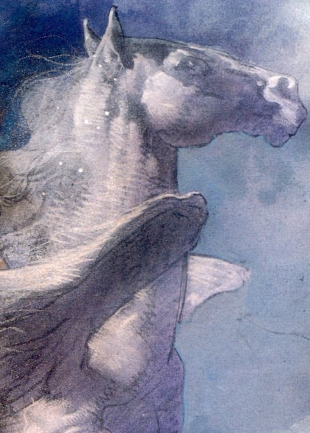 Aragorn (Earth-9591)