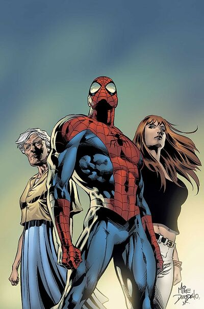 Amazing Spider-Man Vol 1 519 Textless.jpg