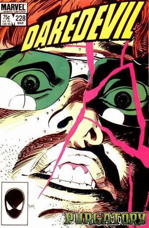 Daredevil Vol 1 228.jpg
