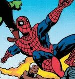 Peter Parker (Earth-19747)