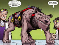 Wolverine (Earth-103173)