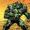 A-Bomb (Warp World) (Earth-616)