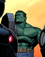 Bruce Banner (Earth-13133)