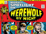Marvel Spotlight Vol 1 2